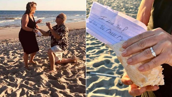 conch shell proposal