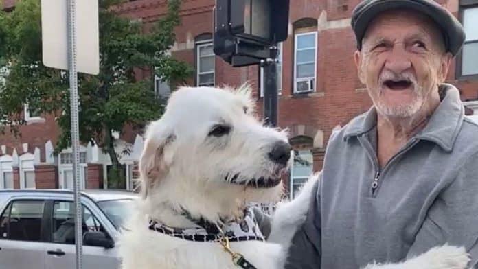 dog reunited with neighbor