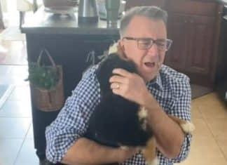 puppy reunion